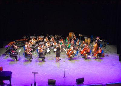 WMC Transitional String Orchestra